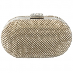 Hard Case Rhinestone Covered Clutch Gold