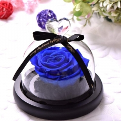 Preserved Eternal Roses in Glass Dome Handmade Dried Real Flower Gift W/Box for Valentine's Day Mother's Day Anniversary Birthday (Royal Blue)