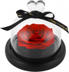 Preserved Eternal Roses in Glass Dome Handmade Dried Real Flower Gift W/Box for Valentine's Day Mother's Day Anniversary Birthday (Red)